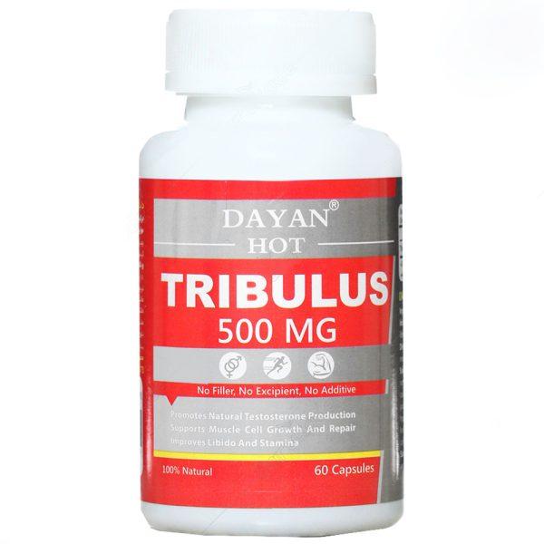 کپسول تریبولوس دایان هات 500 میلی گرم دایان فارما